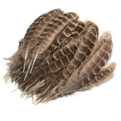 50pc Natural Hen Pheasant Tail Feathers Wedding Party Millinery Craft Decoration