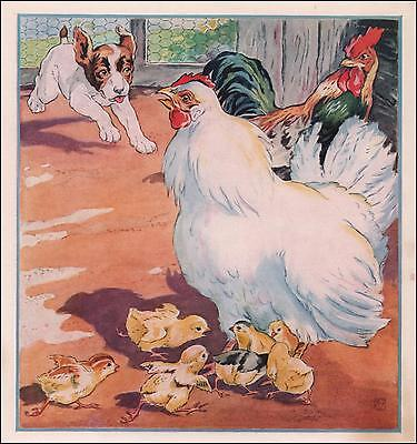 DOG Chasing CHICKENS, CHICKS, vintage print, authentic 1940
