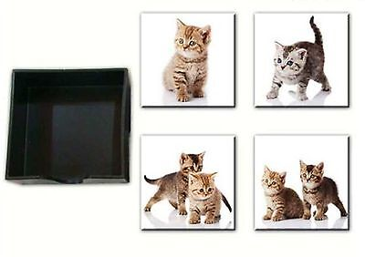 Cat Coaster -Set of 4 Different Ceramic Ginger & Grey Tabby Kittens Keepsafe box