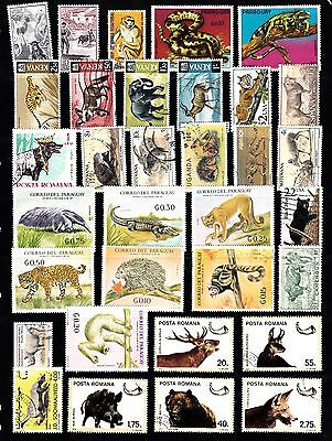 ANIMALS Thematic STAMP COLLECTION Mint Used REF:TH552