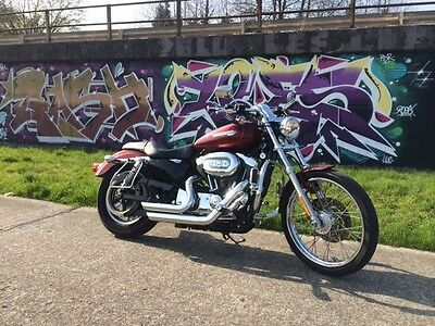 harley sportster xl 1200 full options