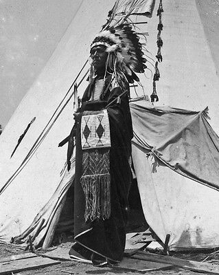 New 11x14 Native American Photo: Black Horse, a Pawnee Chieftain in Costume 1904