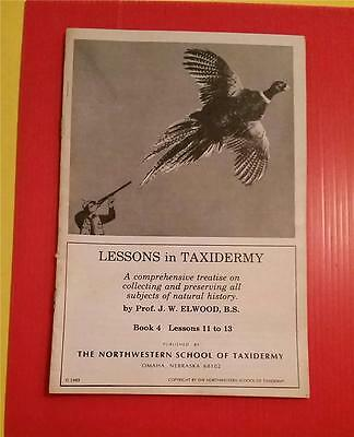 "RARE VINTAGE ""1950-60's NORTHWESTER SCHOOL of TAXIDERMY - OMAHA NEBRASKA"""
