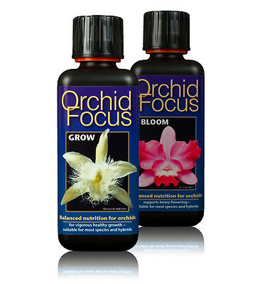2 x 300ml - Orchid Focus Plant Food - GROW & BLOOM - Nutrients for Orchids
