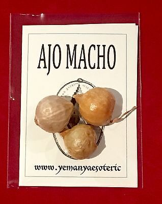 🍀 AJO MACHO 🍀 GENUINE!! LUCK, PROTECTION, FORTUNE, MONEY... (3 Garlic per bag)