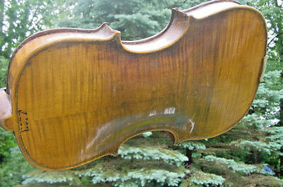 ANTIQUE HOPF VIOLIN 100 more in r ebay store NICE OLD FIDDLE GREAT TIGER BACK
