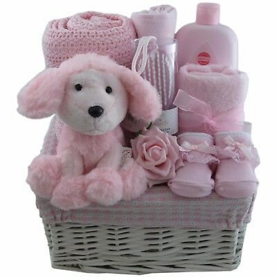 Adorable baby gift basket/hamper girl 4 piece set baby shower nappy cake