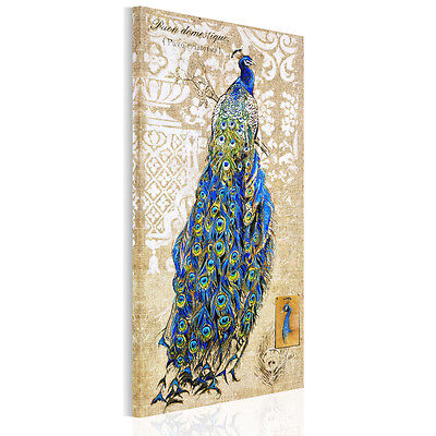 Unframed Canvas Print Modern Home Decor Wall Art Picture Colorful Peacock Poster