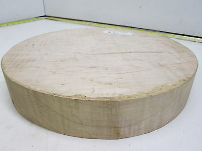 Curly Maple Bowl Turning Blank (2'' x 11 3/4'')