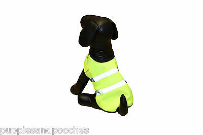 PetGear Hi Vis Jacket Yellow - Keep Your Dog Safe  - See Your Dog in the Dark