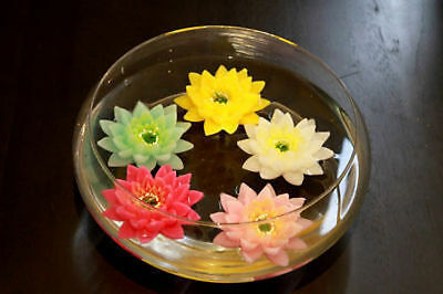 5 x Lotus Flower Candle 2 Pack Floating 5 Ass Bulk Wholesale lot reduced to clea