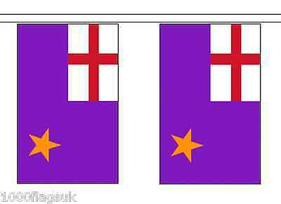 Northern Ireland Purple Standard Polyester Flag Bunting - 9m long with 30 Flags