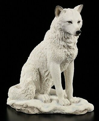 Weiße Loup Figure assise - Statue Déco Loups Vie sauvage Veronese