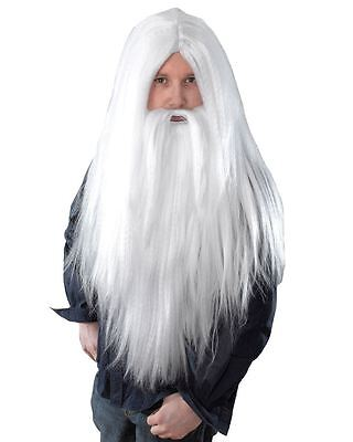 Men's Long White Wizard Wig & Beard Santa Gandalf God Merlin Fancy Dress Set