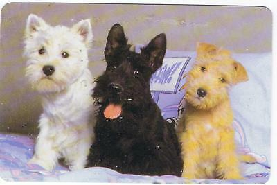 3 Dogs  Puppies - Deck Of 52 Playing Cards & Jokers Unused