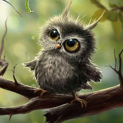 DIY 5D Diamond Painting Owl Embroidery Cross Crafts Stitch Home Room Wall Decor