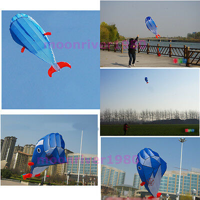 Outdoor Sports Easy to Fly 3D Kites Giant Parafoil Huge Dolphin Blue Power Kite
