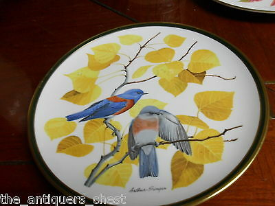 """""""SONGBIRDS OF THE WORLD"""" FRANKLIN PORCELAIN by Wedgwood  plate """"WESTERN BLUEBIRD"""