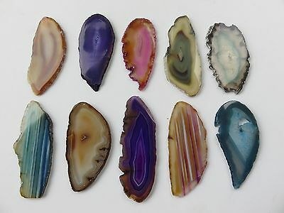 "Brazilian Agate Geode Slab/Slice- Lot of 12-Mixed Colors- 3 "" Assorted #6"
