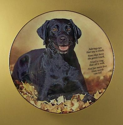 Cherished Labrador Retrievers ADORING EYES Plate Danbury Mint Black Lab Dog
