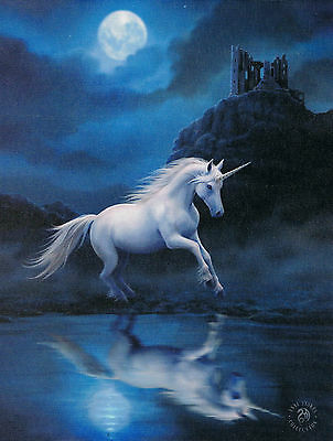 NEW Fantasy Picture Moonlight Unicorn Wall Plaque by Anne Stokes 25 cm x 19 cm