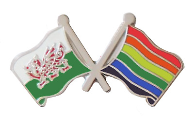 Rainbow LGBT Pride Flag & Wales Flag Friendship Courtesy Pin Badge - RB12