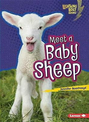 Meet a Baby Sheep by Jennifer Boothroyd (English) Paperback Book Free Shipping!