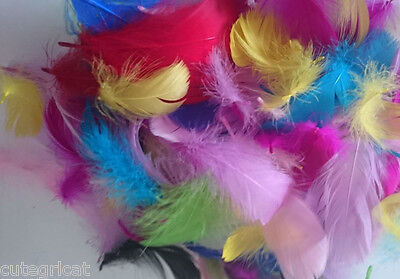 50pcs - Mixed Colour Goose Craft Feathers - Good Quality