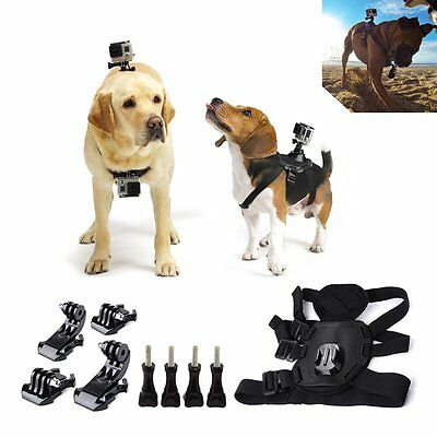 Dog Chest Back Mount Strap accessoryPet Harness for GoPro Hero4/3+/3/2/1 Camera