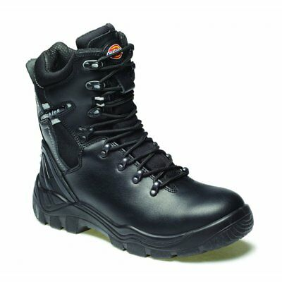 Dickies Quebec Unlined Safety Boot Black FD23376 size 6-12