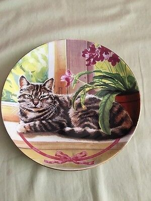 Porcelain Cat Plate