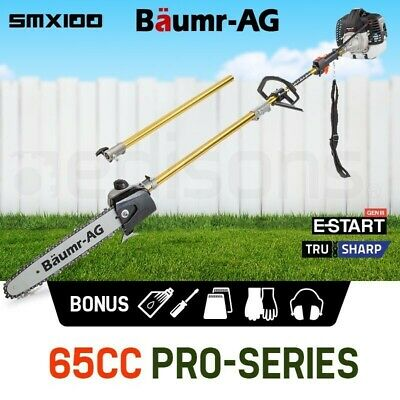 NEW Baumr-AG Pole Chainsaw Petrol Chain Saw Pro Arbor Tree Pruner Tool Cutter