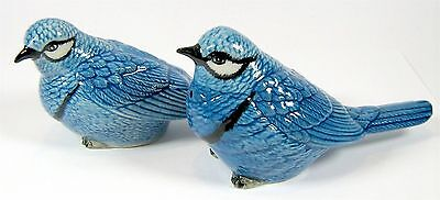 Blue Birds - Ceramic Salt & Pepper Shakers