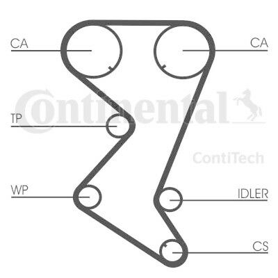 CONTITECH Water Pump & Timing Belt Kit