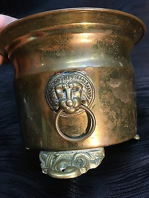 Antique Footed Brass Bucket Planter with Lion Head Handles Vintage