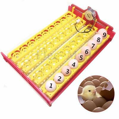 Automatic Eggs Turner 36 Chicken Duck Quail Bird Poultry 110/220v Incubator Tray