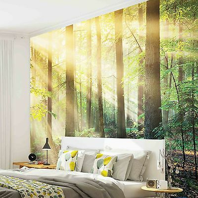 FOREST LANDSCAPE TREES SUNLIGHT  Photo Wallpaper Wall Mural (W1190VE)