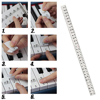 Transparent Keyboard / Piano Stickers up to 54/61 KEY Set to learn Piano Clear