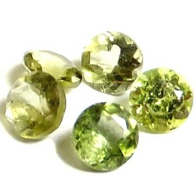 NATURAL LOVELY GREEN TOURMALINE LOOSE GEMSTONES (5 pieces) ROUND (3.6-3.7 mm)