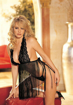 Shirley of Hollywood 96110 Stretch Lace And Fringe Halter Babydoll