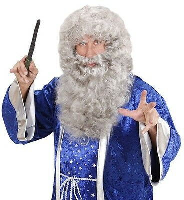Deluxe Grey Wizard Wig Beard Gandalf Dumbledore Magic Merlin Sailor Fancy Dress