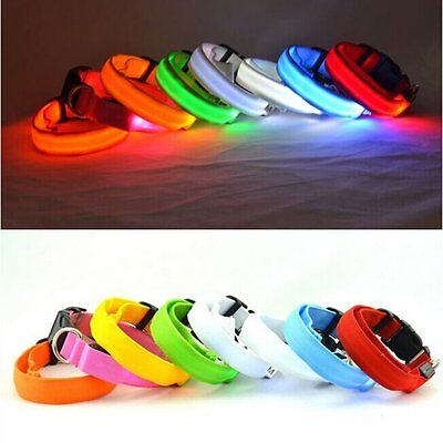 LED Dog Night Safety Pets Flashing Light Adjustable Cats Nylon Collar Leash