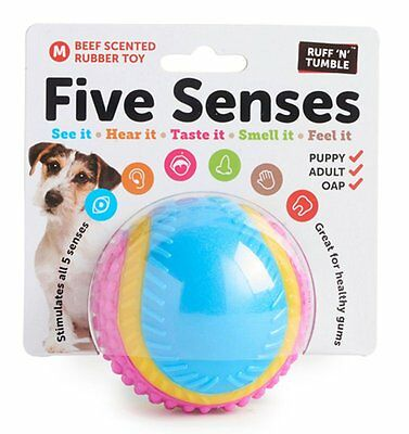 Ruff 'N' Tumble Five Senses