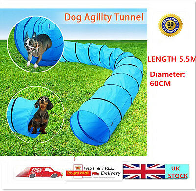 5.5M Cat Dog Agility Training Tunnel Obedience Equipment Pet Toys With Free Bag