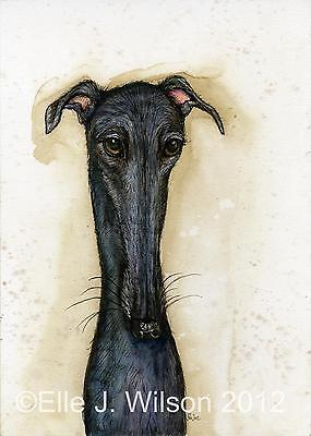 Greyhound Art Dog Print
