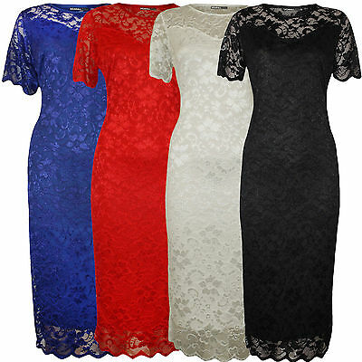 Ladies Plus Size Nauvelle Sweetheart Lace Lined Bodycon Floral Midi Dress