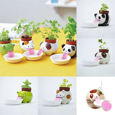 Ceramic Cultivation Drinking Animal Tougue Self Watering Planter Office Decor