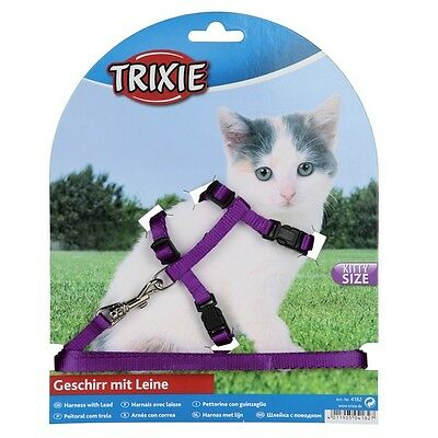 Kitten harness and lead, various colours. snap buckles(4182)