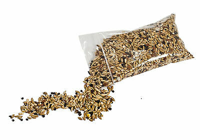 100g Type I Seed Mix for Granivorous queens ants and ants colony (Harvester ant)