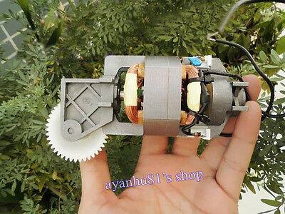 AC230V 200W Johnson Series Excitation Motor Series Motor Worm Gear Reducer Motor